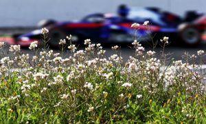 Honda happy with calm after McLaren storm