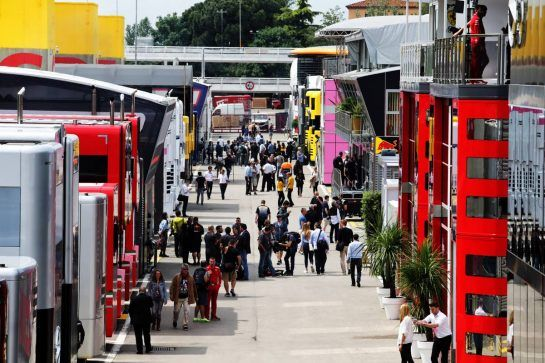 The paddock.